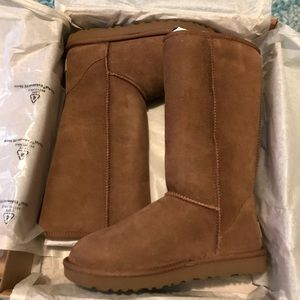Classic Tall Ugg Boots Size 6